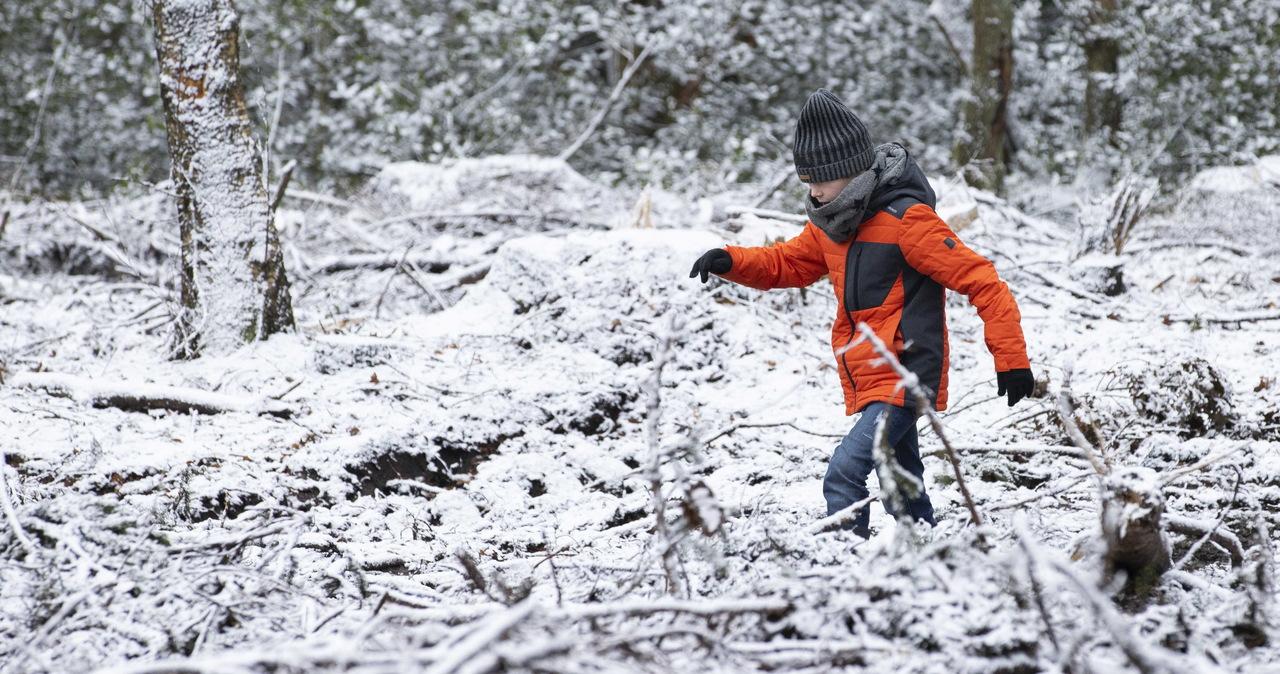 Od poniedziałku ferie zimowe. Na jaki wypoczynek mogą liczyć uczniowie?