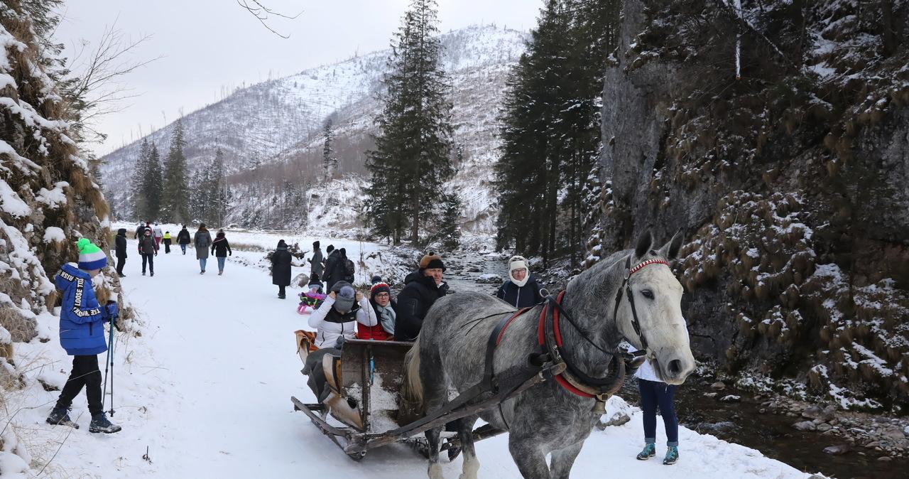 Góralskie Veto o wsparciu rządu dla gmin górskich: Rzucenie ochłapów, otwieramy biznesy