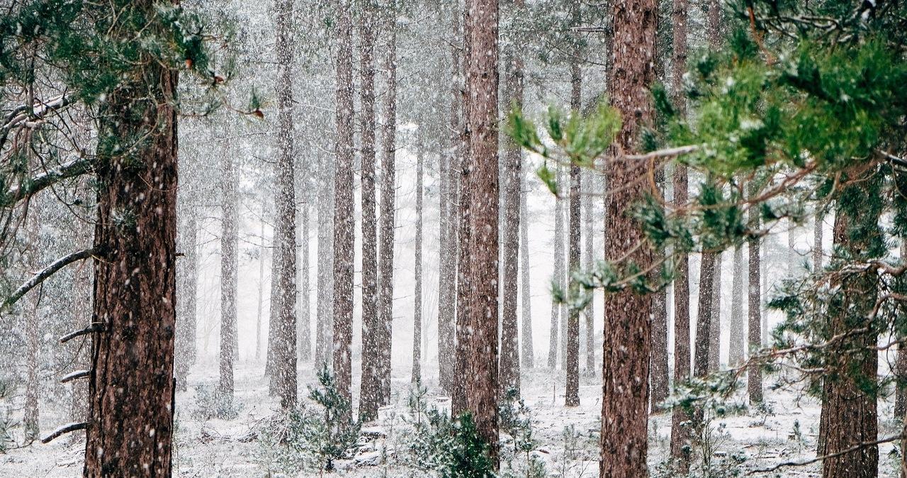 Ostrzeżenia IMGW dla południowej części Polski. Chodzi o opady śniegu