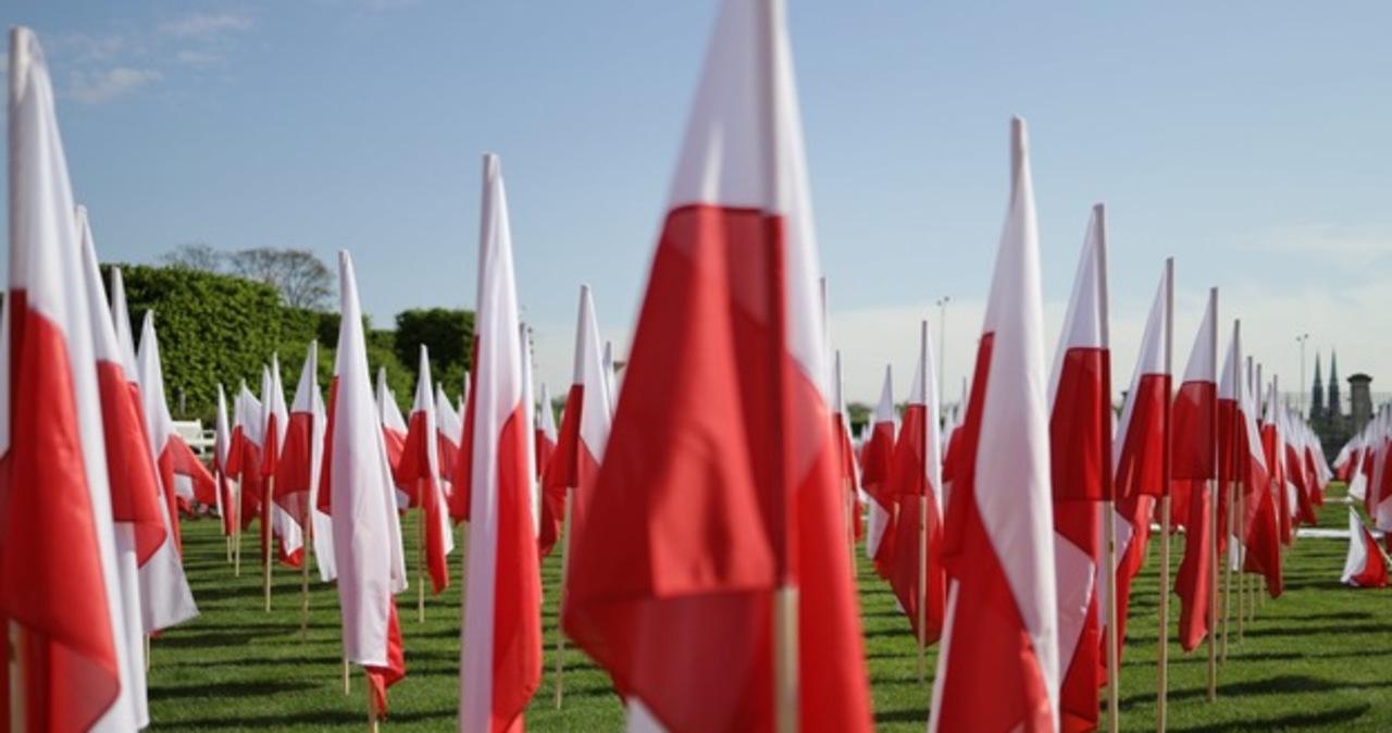 Polska flaga: kolory, symbolika i historia