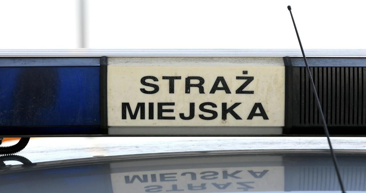 Bunt strażników miejskich w Łodzi: Nie chcą kontrolować przedsiebiorców