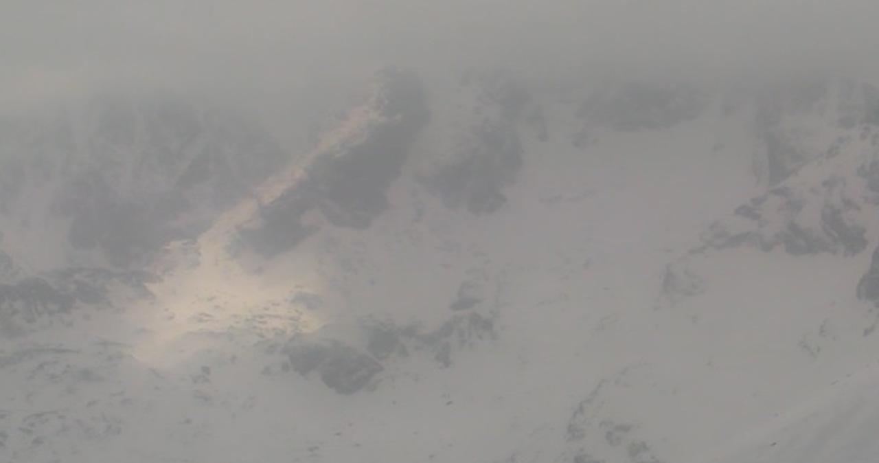 Na szczytach Tatr spadł śnieg. Na polanach kwitną krokusy