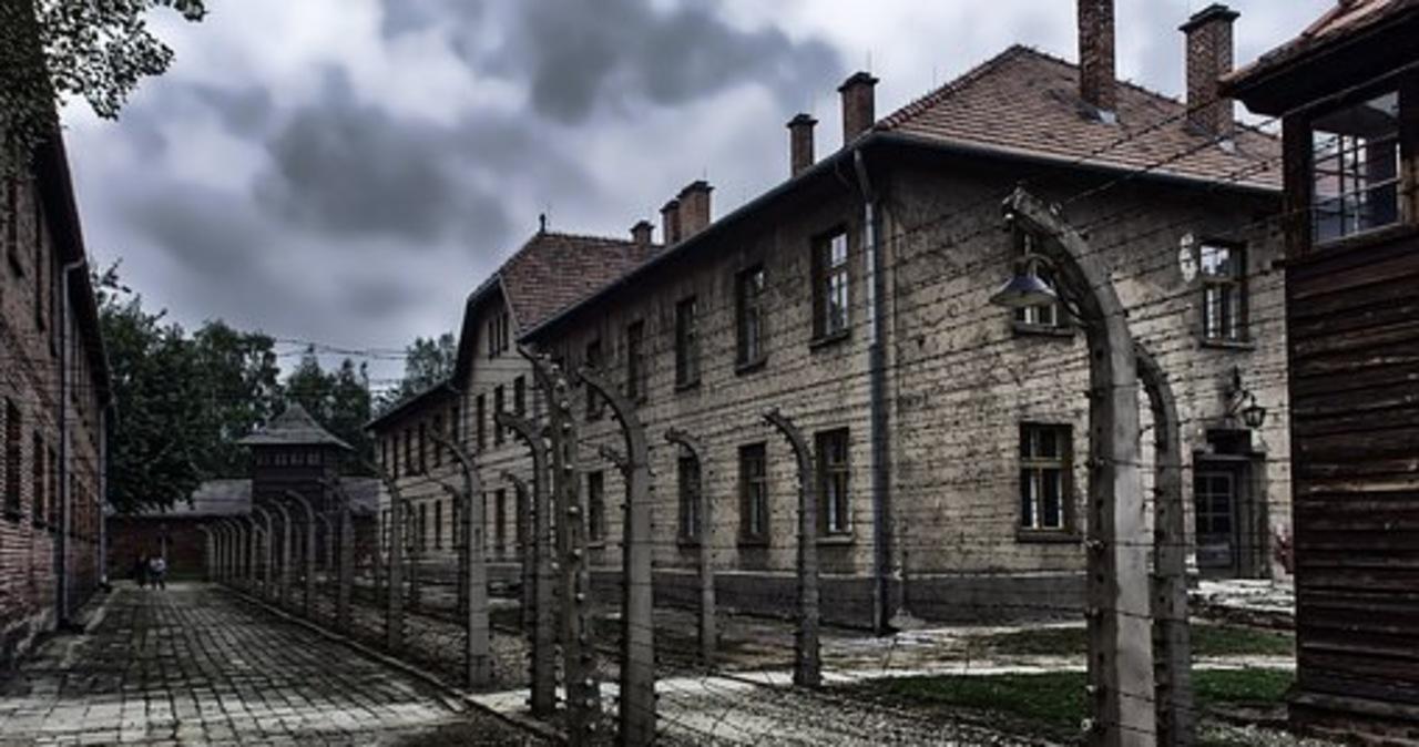 Szczątki znalezione na terenie uczelni w Berlinie to ofiary dr. Mengele z Auschwitz