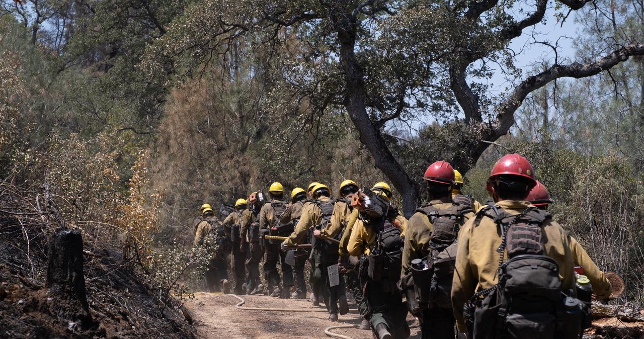 USA: Pożary szaleją w stanie Oregon. Ponad 2 tys. ludzi musiało uciekać