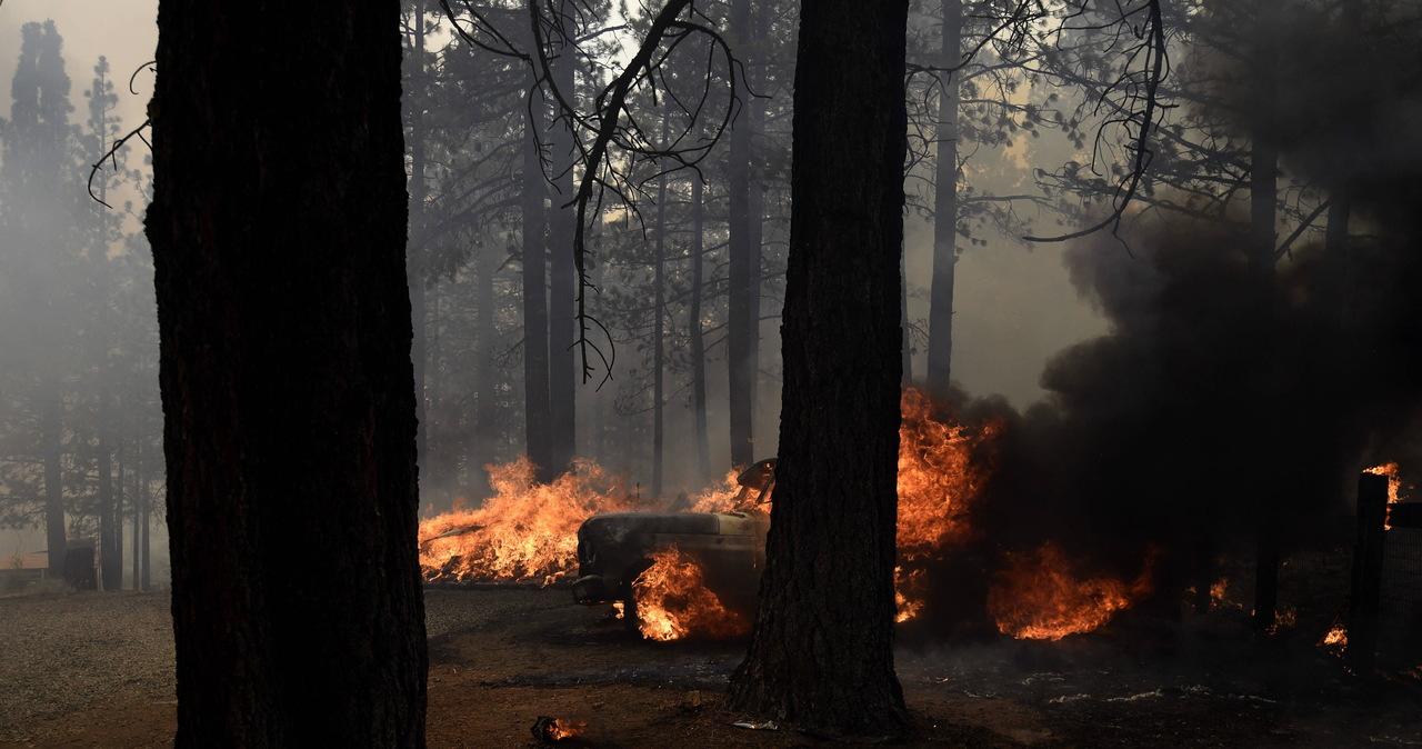80 niszczycielskich pożarów szaleje w USA. Nie pomagają fala gorąca i susza