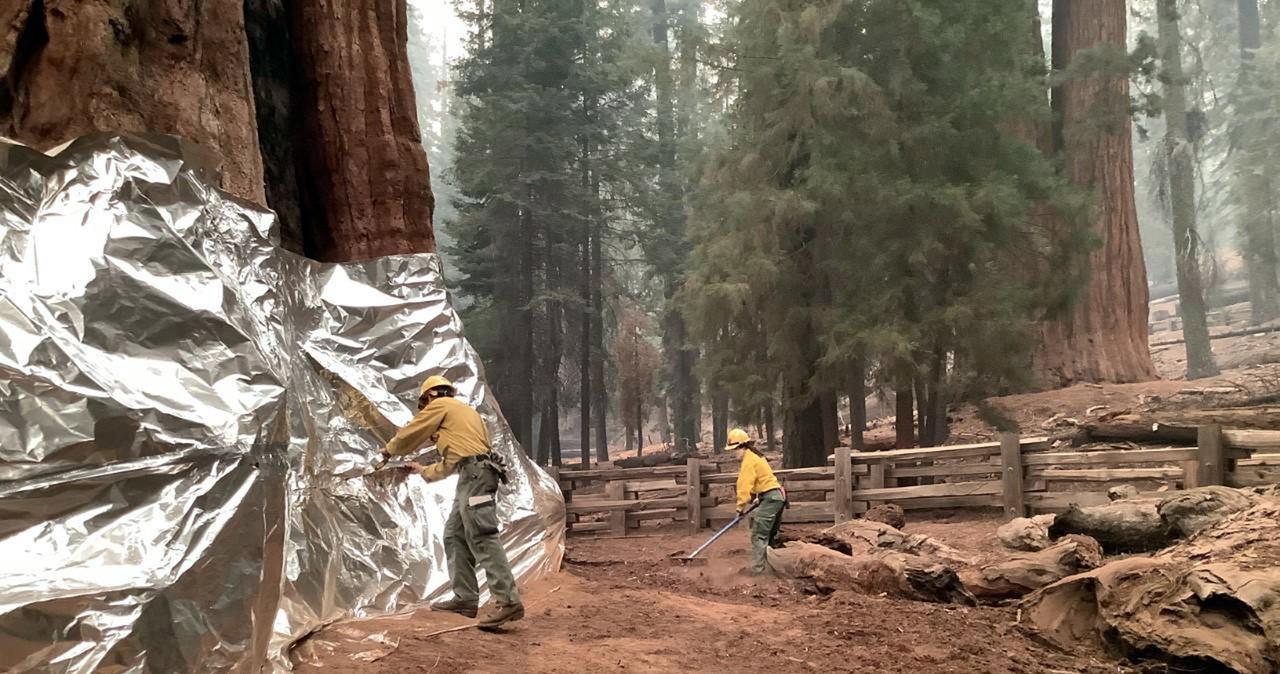 Pożary w Kalifornii: Mieszkańcy chronią swoje domy aluminiowymi osłonami