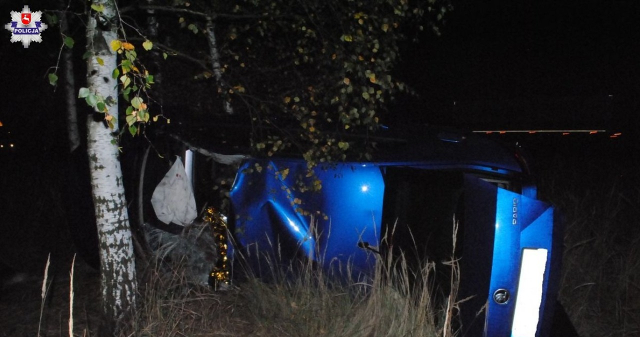 Tragiczne zderzenie z łosiem w Annówce. Zginął 65-letni kierowca